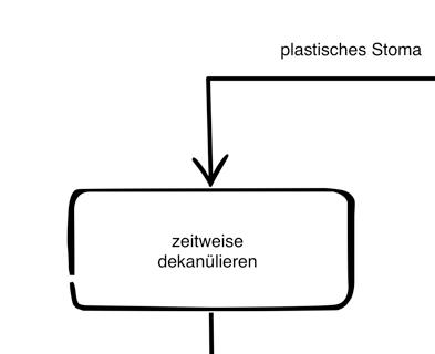 Dekanülierungsschema_plastisches_Stoma